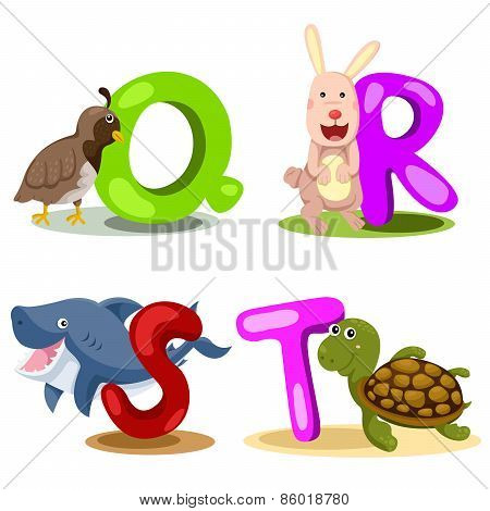 Illustrator alphabet animal LETTER - q,r,s,t