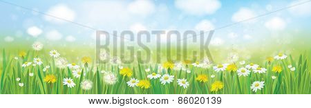 Vector nature spring background.