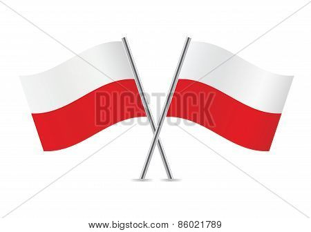 Polish flags. Vector illustration.