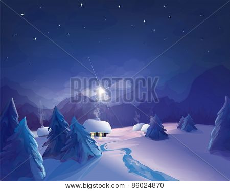 Vector night winter scene.