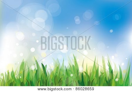 Vector spring nature background blue sky and green grass.