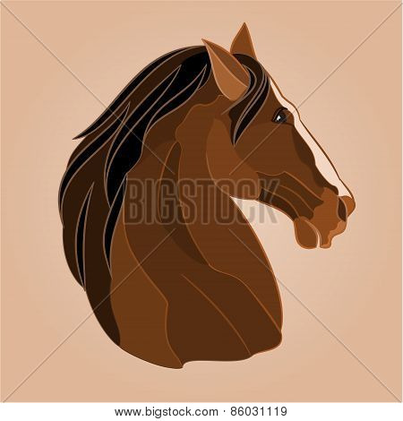 The Head Of A Brown Horse Stallion Vector