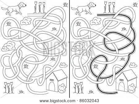 Dog Maze