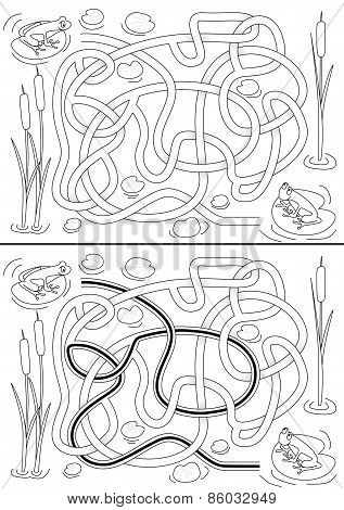 Frogs Maze