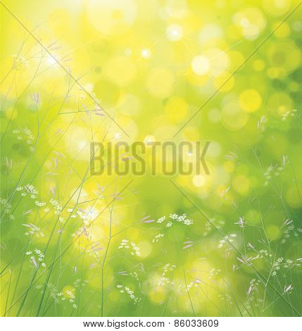 Vector nature  floral background.