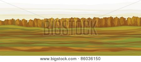 Vector autumnal forest background.