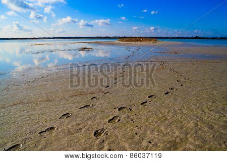 Human Footprints In The Sand Leading To The Lake