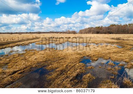 Flooded Meadows In Early Spring