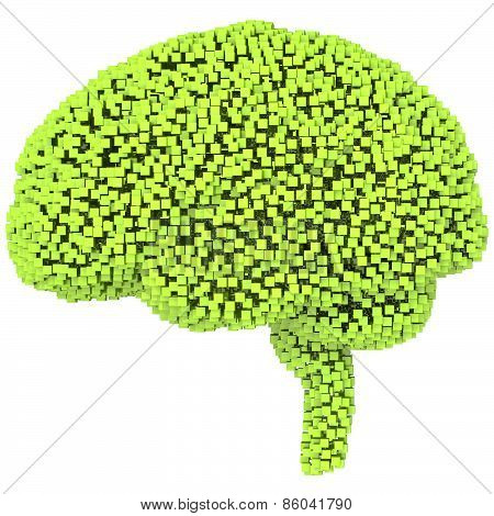 Voxel human brain. 3d render on isolated white background
