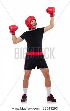 Funny boxer isolated on the white