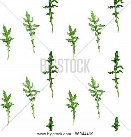 seamless pattern with leaves of arugula