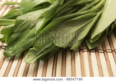 Fresh Green Leaves Of Lettuce
