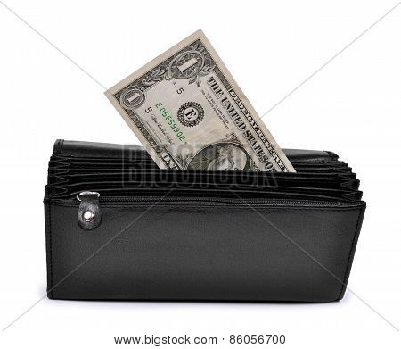 dollar in purse