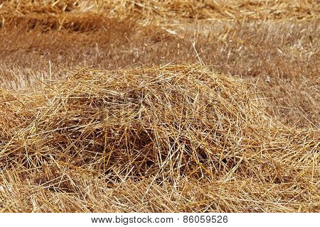 Straw As Background