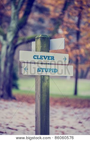 Signpost With Arrows Pointing Two Opposite Directions Towards Clever And Stupid