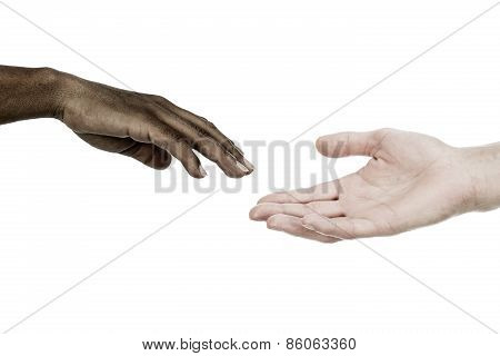 Interracial Hands Reaching Each Other