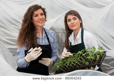 Two female bio technicians inspecting plants