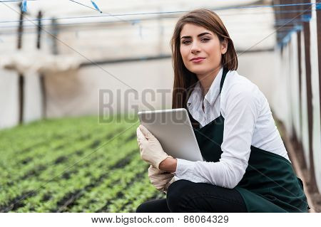 Woman checking greenhouse crops