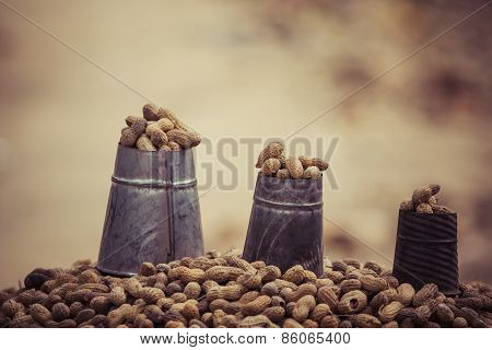 Nuts On The Local Market