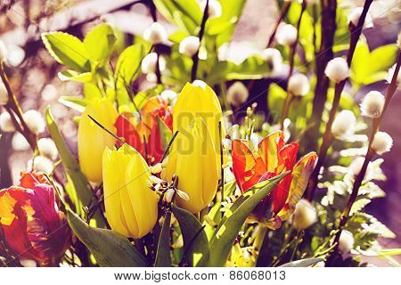 Outdoor Easter Bouquet Of Flowers With Tulips And  Pussy Willows, Vintage Version