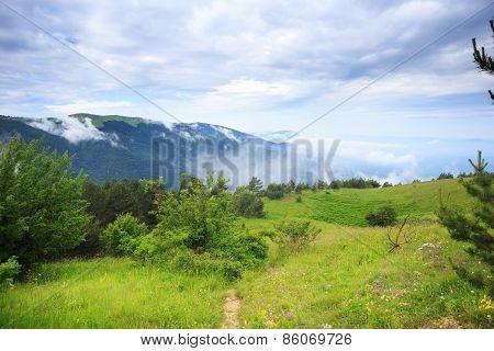 Path To The Mountain Spirit