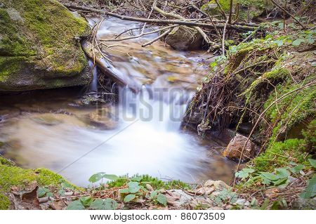 Forest brook waterfall