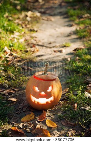 Halloween Jack-o-lantern Standing On Path