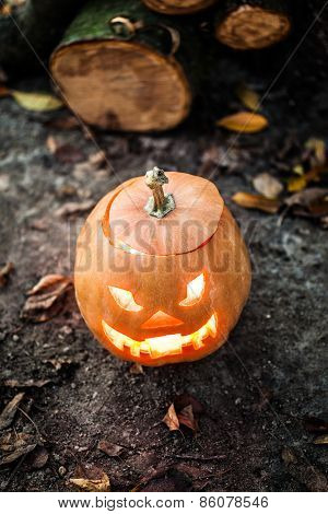 Halloween Jack-o-lantern Standing On Ground