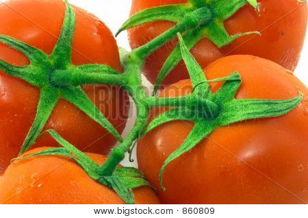Bunch of tomatoes closeup, four, horizontal orientation