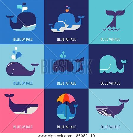 Collection of vector whale icons and illustrations