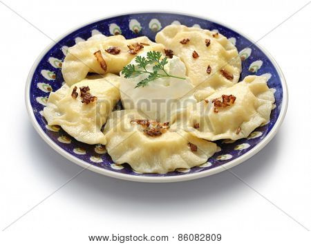 homemade pierogi dumplings, polish food isolated on whte background