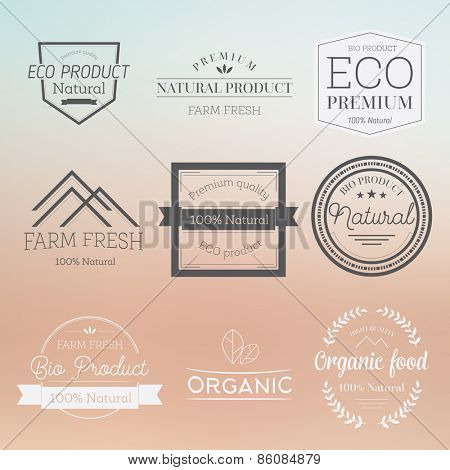 Set of vintage style elements for labels and badges for organic food and drink Illustration on blurred background