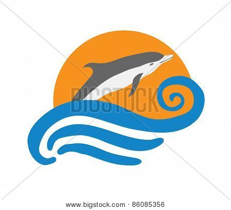 Dolphin vector illustration, isolated logo on white