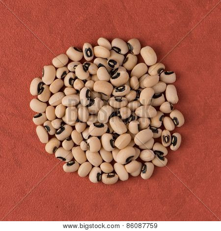 Circle Of White Beans