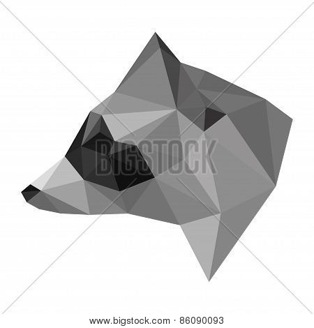 Abstract Polygonal Geometric Triangle Raccoon Head Isolated On White Background