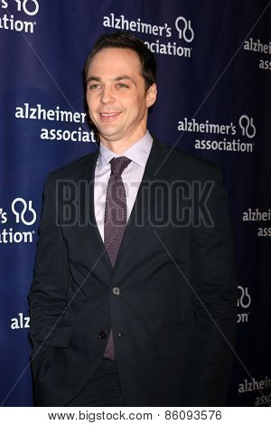 LOS ANGELES - MAR 18:  Jim Parsons at the 23rd Annual A Night at Sardi's to benefit the Alzheimer's Association at the Beverly Hilton Hotel on March 18, 2015 in Beverly Hills, CA
