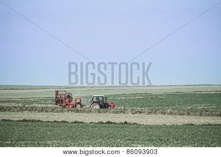 Red Tractor In A Spring Field