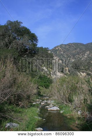 Pacoima Canyon