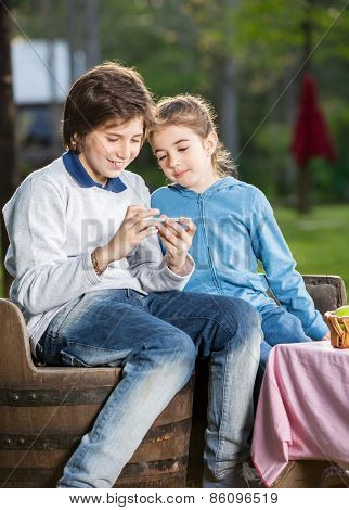 Happy siblings using smartphone at campsite