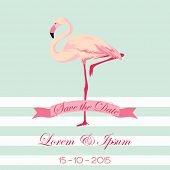 picture of flamingo  - Save the Date  - JPG