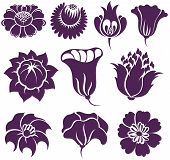 picture of organist  - Set of different flowers silhouette  for logo - JPG