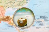 picture of caribbean  - Looking in on a tropical beach with a blurred map of the Caribbean in the background - JPG