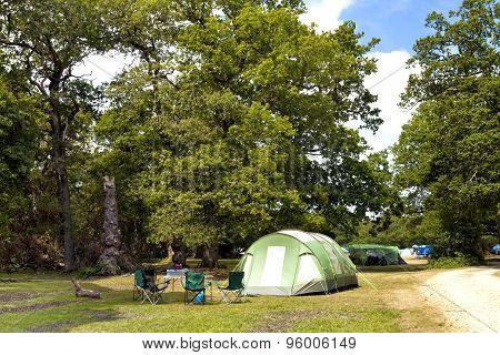 Camping tents under the trees in the New Forest campground