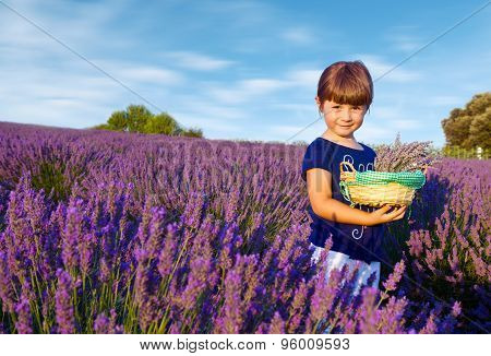 Happy Little Girl Is In A Lavender Field Holds A Basket Of Flowers