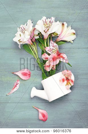 Beautiful alstroemeria in water can on wooden background