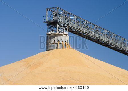 Corn Pile 3149