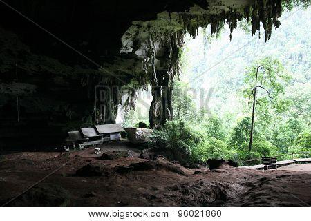 Niah National Park, Niah Cave in Sarawak Malaysia