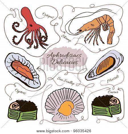 Hand drawn vector collection of seafood aphrodisiacs