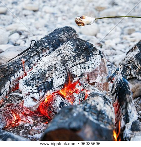 Marshmallows Sticked On A Twig, Being Toasted