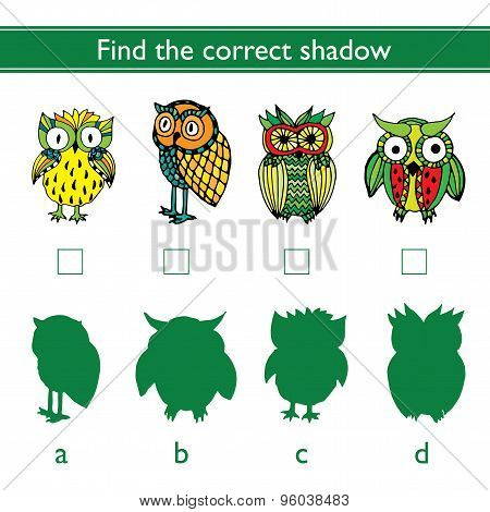 Find the correct shadow (owl)